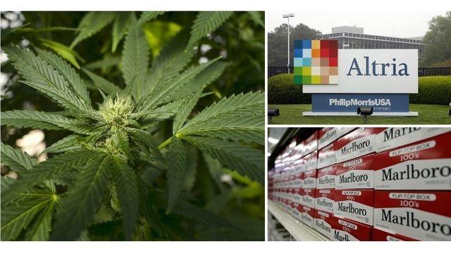 Economía: Tabacalera se abre al mercado de la marihuana