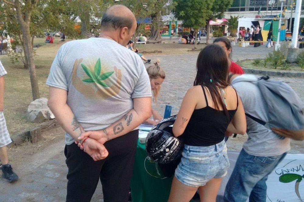 Registro: 250 pacientes solicitan cannabis medicinal en Necochea