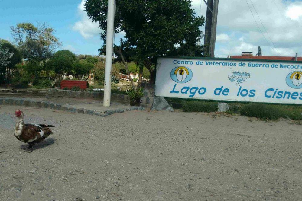 La Municipalidad tomó el control del Lago de los Cisnes