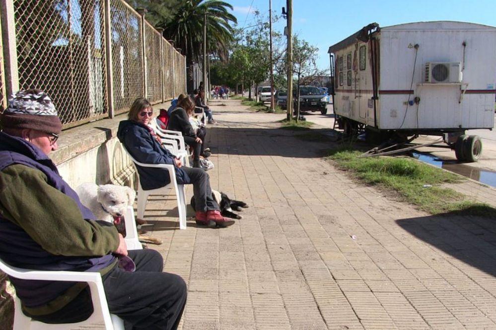 La Comuna realiza hasta 25 castraciones de animales por día
