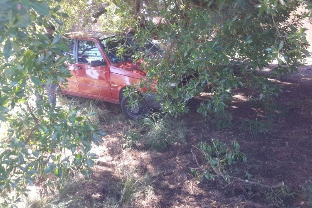 Encontraron auto robado que estaba escondido en Ruta 88
